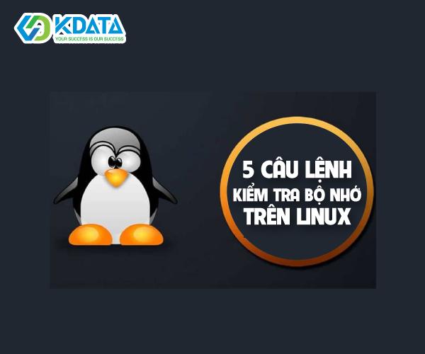5 câu lệnh kiểm tra bộ nhớ trên Linux