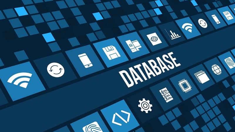 Cơ sở dữ liệu Database là gì? Các loại Database phổ biến hiện nay (1)