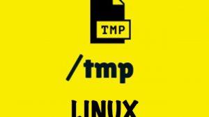 Thư mục /tmp và /var/tmp trong Linux khác nhau như thế nào? (1)