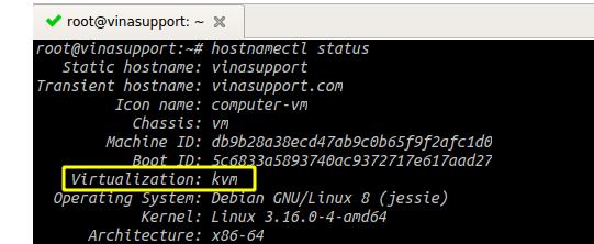 Cách kiểm tra loại công nghệ ảo hóa Virtualization của VPS Linux (1)