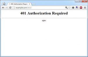 Hướng dẫn Basic HTTP Authentication để bảo vệ thư mục trong Nginx (2)