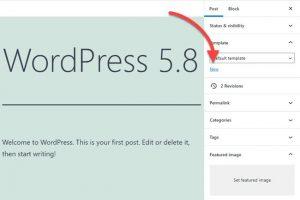 WordPress 5.8 có gì mới? Version 5.8 có tính năng gì nổi bật? (1)
