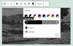 WordPress 5.8 có gì mới? Version 5.8 có tính năng gì nổi bật? (11)