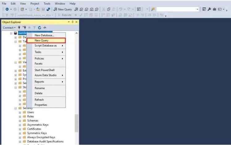 Cách import script SQL Server trên công cụ SQL Management (1)