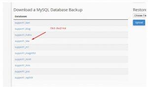 Cách sao lưu dữ liệu WordPress trên hosting cPanel (13)