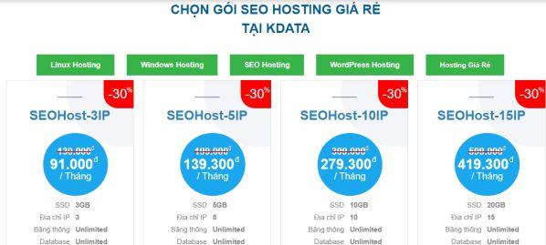 Hosting chuẩn SEO là gì? SEO Hosting ảnh hưởng đến SEO ra sao?3